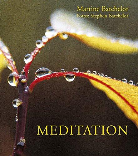 Meditation Taschenbuch – 30. August 2003 Martine Batchelor Stephen Batchelor Arbor 3924195838