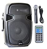Ignite Pro 12'' Pro Series Speaker DJ / PA System / Bluetooth Connectivity 1800W