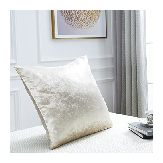 """GIGIZAZA Ivory Off White Velvet Decorative Throw Pillow Cushion Cover 20 inch Pillow Cases for Sofa Bed (20x20inch(50x50cm), Champing) - Shinny velvet soft touch fabric . Material:Made by High Quality Velvet Comforter and Durability Fabric . Quantity:Sold by One Piece Pillow Cover ( Insert not Include ) Feature:Champing Colorway , size 20 x 20"""", Tailored for 20 x 20 inch insert . Same Pattern & Color for Both Front and Back. - living-room-soft-furnishings, living-room, decorative-pillows - 515SuVozGnL. SS570  -"""
