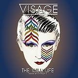 Wild Life: Best Of 1978-2015