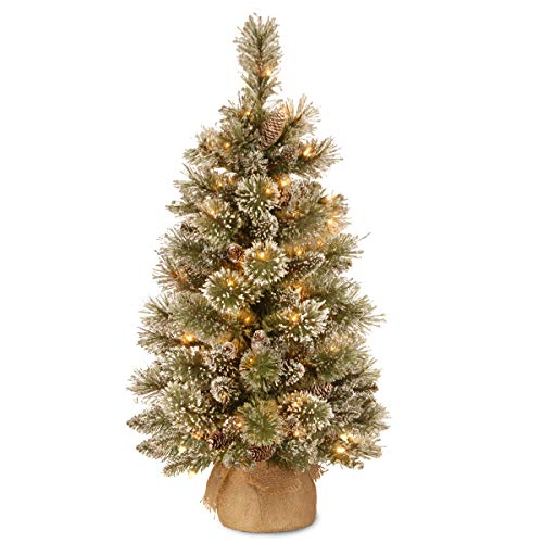 National Tree 3 Foot Glittery Bristle Pine Tree with 7 White Tipped Cones and 35 Warm White Battery Operated LED Lights with Timer in Burlap (GB3-392-30-B1) (Lighted Three Foot Christmas Tree)