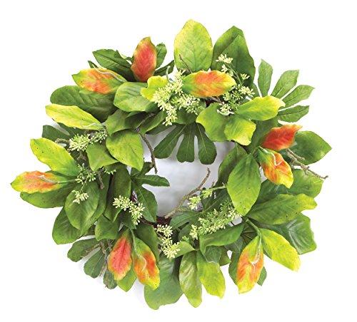 Melrose International Magnolia Leaf Wreath, 21-Inch