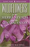 Wildflowers of the Sierra Nevada and the Central Valley, Laird R. Blackwell, 1551052261