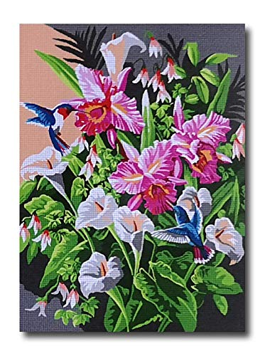 (Stafil Needlepoint Kit Flowers with Hummingbirds 16x12in 40x30cm Printed Canvas LJ7551)