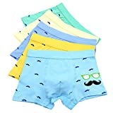 Boy's Boxer Briefs Comfortable Cotton Short Toddler Underwear 5 Pack (4-6 Years, A)
