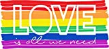 Love LGBT Pride Flag Home Decal Vinyl Sticker 14'' X 6''