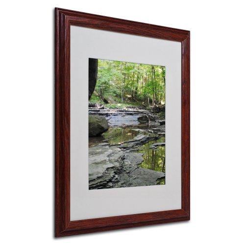 Trademark Fine Art Crystal Rock by Monica Fleet, Wood Frame, 16 by 20-Inch -