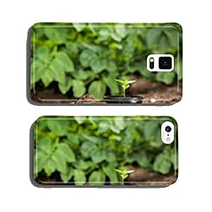 Young plant in a pot ready for planting cell phone cover case Samsung S5