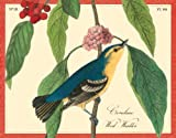 img - for Audubon Warblers Keepsake Boxed Notecards book / textbook / text book