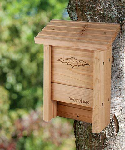 Club Pack of 6 Woodlink Bat House DIY Craft Kits by BestNest (Image #1)