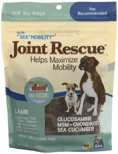 Ark Naturals Sea Mobility Lamb Jerky for Dogs, 9-Ounce Pouches by Ark Lighting Sea Mobility Lamb Jerky