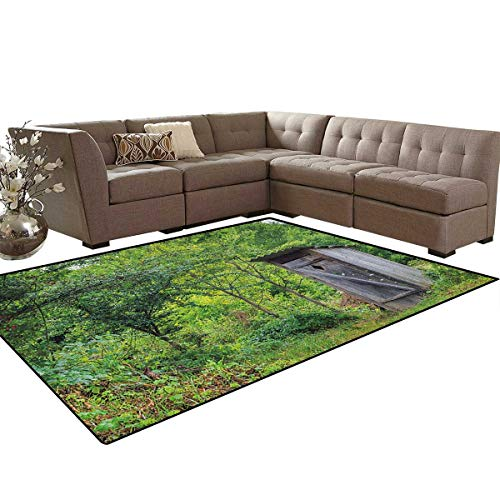 Outhouse,Rug,Worn Out Cottage Hut in Abandoned Forest Spring Time Vivid Design Image,Home Decor Floor Carpet,Fern Green and Grey Size:6'6