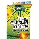 The Enigma Ignite (The Enigma Series Book 3)