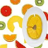 IETONE 20 Pcs Realistic Artificial Fruit, Lifelike