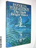Dark Bright Water