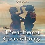The Perfect Cowboy | VD Cain