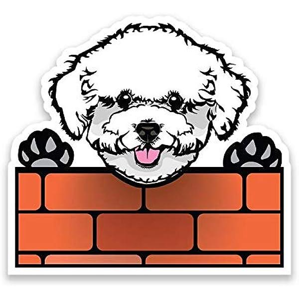 BICHON FRISE Car Sticker V02 Havanese Dog Window Decal Bumper Sign Pet Gift