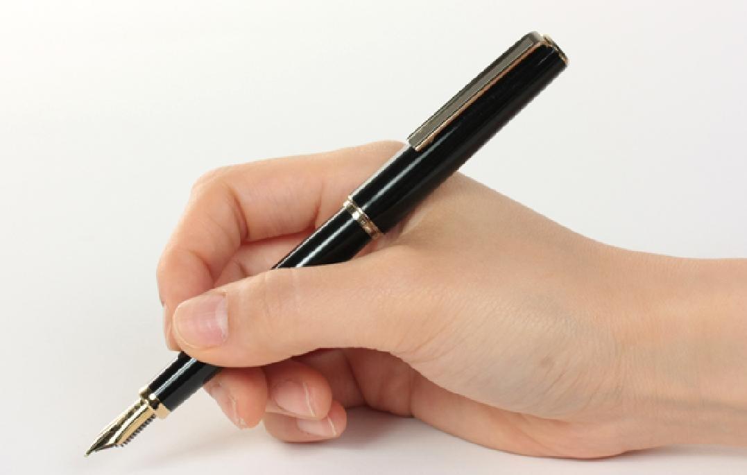 Fine Nib Sailor Young Profit Fountain Pen japan import Black Body
