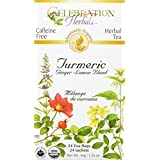 Celebration Herbals Turmeric Blend Organic 24 Tea Bag, 36Gm