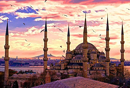 Mosque Ahmed Sultan (Sultan Ahmed Mosque Istanbul Art Print Canvas Poster,Home Wall Decor(13x20 inch))