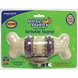 Premier Busy Buddy Bristle Bone Dog Toy, Medium, My Pet Supplies