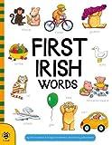 First Irish Words %28Irish Edition%29