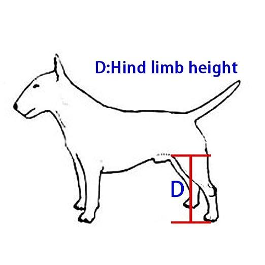 LLG-CWLY Silla de Ruedas para Mascotas,Silla de Ruedas para Perros,Carro para Perros,Ajuste Multidireccional,Adecuado para Perros,Gatos y Otros Animales.
