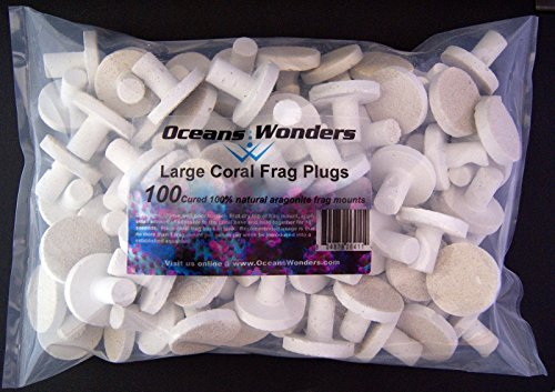 Oceans Wonders Large Coral Frag Plugs 100pc