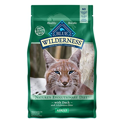 Blue Buffalo Wilderness High Protein Grain Free, Natural Adult Dry Cat Food, Duck 5-lb