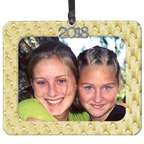 - 2018 Magnetic Iridescent Foil Photo Christmas Ornament, Gold-Silver Blended Design Black Satin Accent Ribbon Hanging, Includes Non-Glare Photo Protector - Horizontal