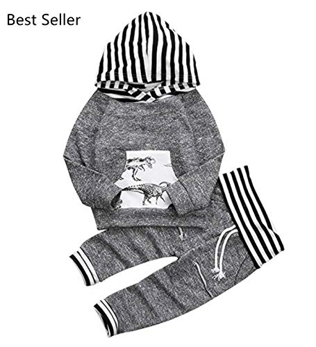 CPEI Toddler Infant Baby Boys Dinosaur Long Sleeve Hoodie Tops Sweatsuit Pants Outfit Set (18-24 Months, Grey) by CPEI