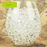 jelly ball clear - DZT1968 3000 Pcs Non-Fade Non-Toxic Water Bullet Balls Water Beads Mud Grow Magic Jelly Balls (Clear)
