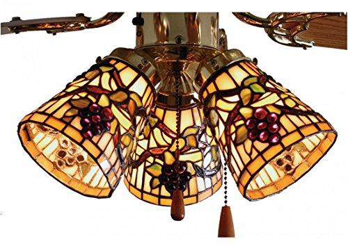 (Meyda Tiffany 67013 Fanlight Shade, 4
