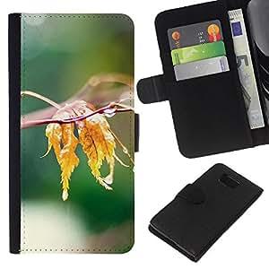 All Phone Most Case / Oferta Especial Cáscara Funda de cuero Monedero Cubierta de proteccion Caso / Wallet Case for Samsung ALPHA G850 // Nature Water Leaf