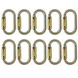 Fusion Climb Ovatti Steel Triple-Lock Oval-Shaped Carabiner 10-Pack