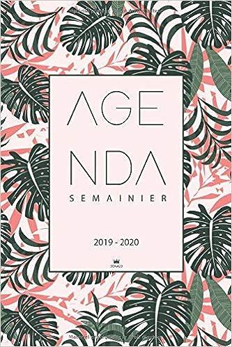 Agenda 2019 2020: Agenda Journalier 2019-2020 | Calendrier ...