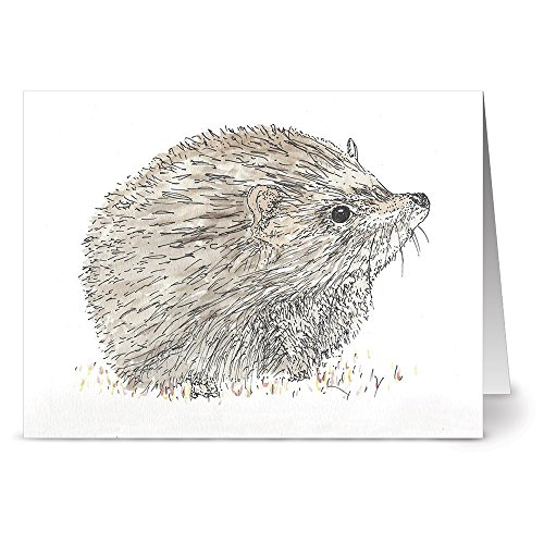 - 24 Note Cards - Forest Hedgehog - Blank Cards - Grey Envelopes Included