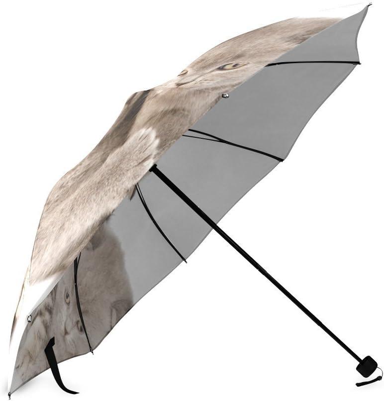 Beautytool Custom Kittens Fluffy Fold Striped Foldable Rain Umbrella