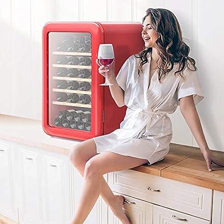 VIY Nevera de vinos vinoteca Refrigerador Bebidas 115 L 49 Botellas 6 Estantes Control Touchpad Temperatura 4-22 °C Doble Cristal