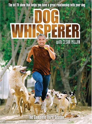 how to get on dog whisperer show