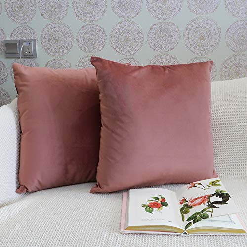 JOJUSIS Pack of 2 Velvet Ultra Soft Solid Decorative Square Throw Pillow Covers Set Cushion Cases for Sofa Bedroom Car Couch 18 x 18 Inch Cameo Brown ()