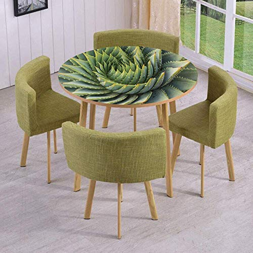VAMIX Round Table/Wall/Floor Decal Strikers/Removable/Botanic Spikey Wild Nature Inspired Western Dessert Plant Flower Artwork Image/for Living Room/Kitchens/Office Decoration