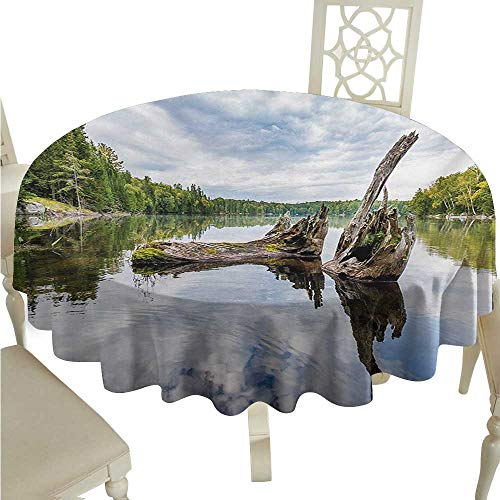 Round Tablecloth Driftwood,Remains of a White Cedar Tree Trunk in The Lake and The Sky Digital Image,Green Pale Grey D70,for Umbrella Table ()