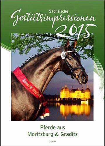 Sächsische Gestütsimpressionen 2015: Pferde aus Moritzburg & Graditz