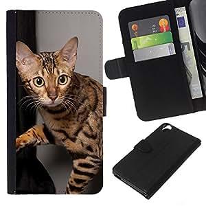 eJoy---La carpeta del tirón la caja de cuero de alta calidad de la PU Caso protector - HTC Desire 820 - --Ocicat Shorthair Bengal Savannah Cat