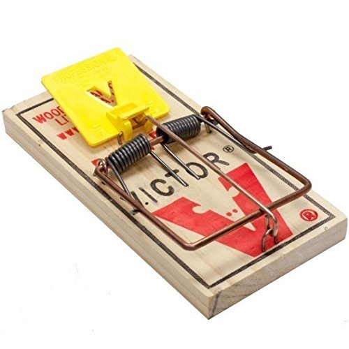Victor Easy Set Mouse Trap (72 Pak) Victor Expanded Trigger Mouse Snap Trap M325 by Victor
