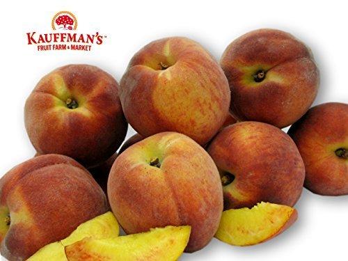 (Kauffman's Fruit Farm Homegrown Peaches Perfect for Fresh Eating, Canning and Freezing. Kosher, Free-Stone, Tree-Ripened, Fresh. (Box of 8)