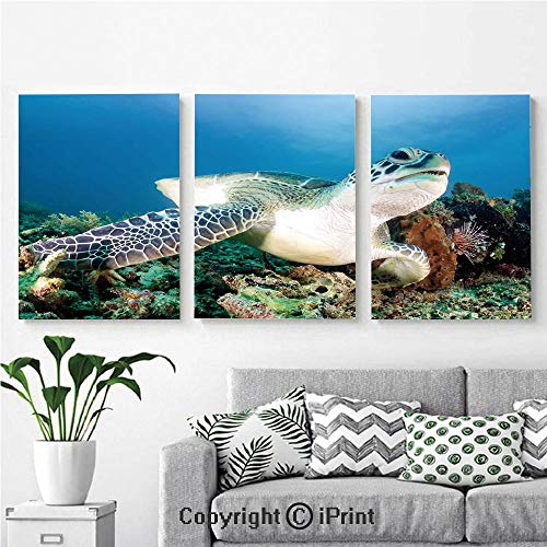 3PCS Triple Decoration Painting Wall Mural Photo of Green Turtle and Lion Fish on Tropical Coral Reef Chelonia Snorkeling Living Room Dining Room Studying Aisle Painting,16