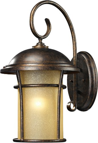 (Elk Lighting 20-Inch Bolla Vista 1-Light Outdoor Wall Sconce, Regal Bronze )