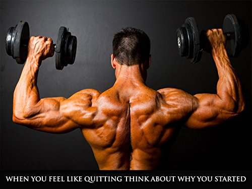 Workout Poster Fitness Bodybuilding Gym Weight Training